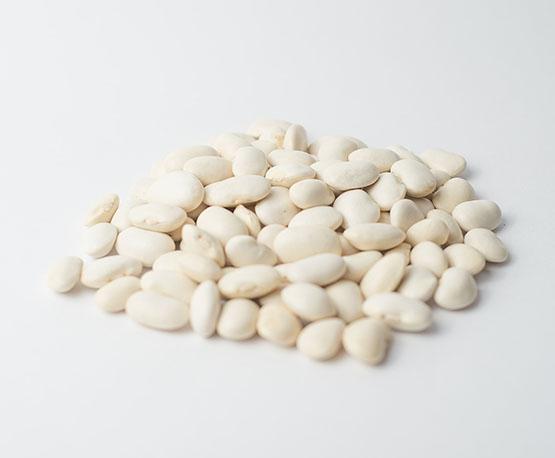 Фасоль белая «Болгарка»